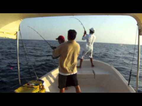 JIGGING and POPPING trip - jeddah/saudi arabia