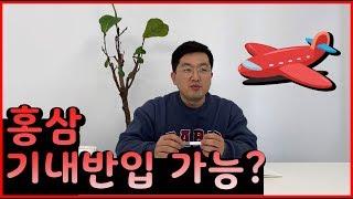홍삼제품, 기내 반입이 가능할까요?/홍삼/홍삼액/홍삼정…