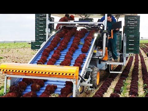 Удивительные фермерские технологии