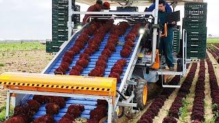 Удивительные фермерские технологии и изобретения. Это совершенно новый уровень сбора урожая.