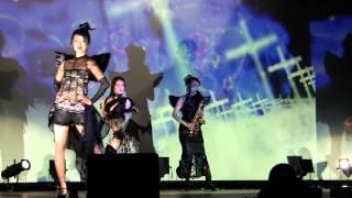 2014年4月5日(土)相模原南市民ホール 編集Ver.1 CG、編集:佐藤えりか...