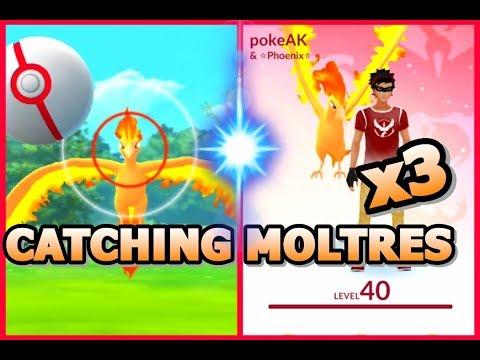 how to catch moltres pokemon go