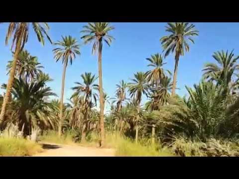 Un tour dans l'oisis de NEFTA(Tunisia)