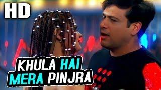 Khula Hai Mera Pinjra | Kumar Sanu & Alka Yagnik | Joru Ka Ghulam 2000 Songs | Govinda