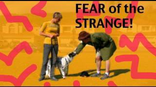Barking Episode 4- Barking at Strangers- Dog training