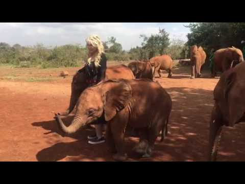 Mary Jean Tully At The David Sheldrick Wildlife Trust