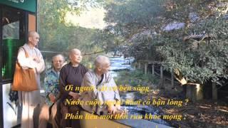 Những khổ thơ hay trong tập thơ: Giấc Mơ Trường Sơn của Sư Phụ Nhạc...