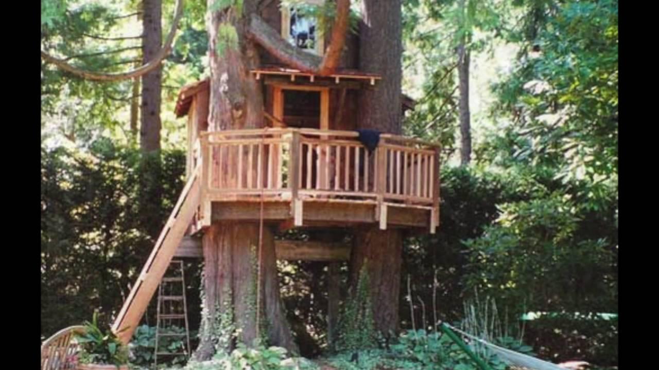 Kids Tree House In 30 Best Design Tree House For Kids Ideas Youtube