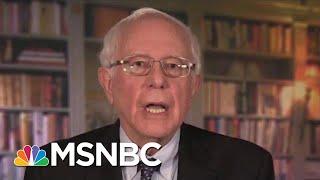 Is Bernie Sanders' Voice Still Unique Enough? | Morning Joe | MSNBC