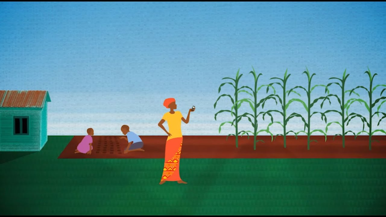 Mobile phones: The farmer's new tool (narrated by Melinda Gates)