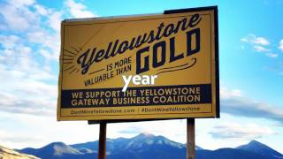 The Yellowstone Needs Your Help!