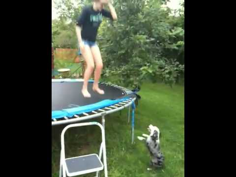 girl-on-trampoline-video-hot-akon-bend-that-ass-over