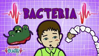 Operation Ouch - Bacteria & Infections | Immune System