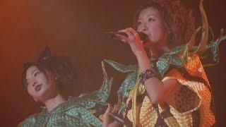 作詞作曲:つんく♂ 編曲:AKIRA Berryz工房で一番好きな曲 0:00 Berryz...