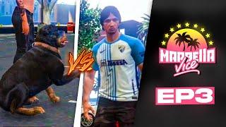 PERRO se pelea con EL KIKE en MARBELLA VICE #3