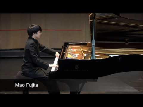 Mao Fujita | quarter-final 2017