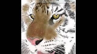 TADO Vids Ipad Tiger Drawing...How to