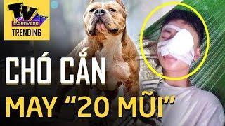 Trên đường đi học nam sinh lớp 10 bị chú chó LAO RA TẤN CÔNG 10 phút mới có chủ chạy ra cứu
