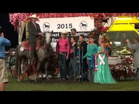 Missouri Fox Trotter World Championship 5yr.Open Mares 2015
