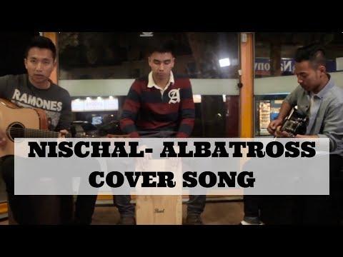 Nischal - Albatross (cover)