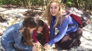 Searching For Treasure Treasure Hunt Funtastic Family