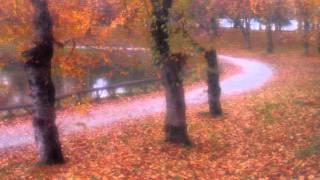 秋元順子 - Autumn Leaves (枯葉)