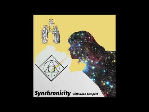 Dreams with Steven Kampmann - Episode 37 - Synchronicity Podcast with Noah Lampert
