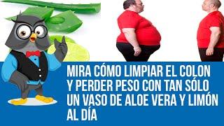 Significa dieta para bajar de peso frutas y verduras que comer