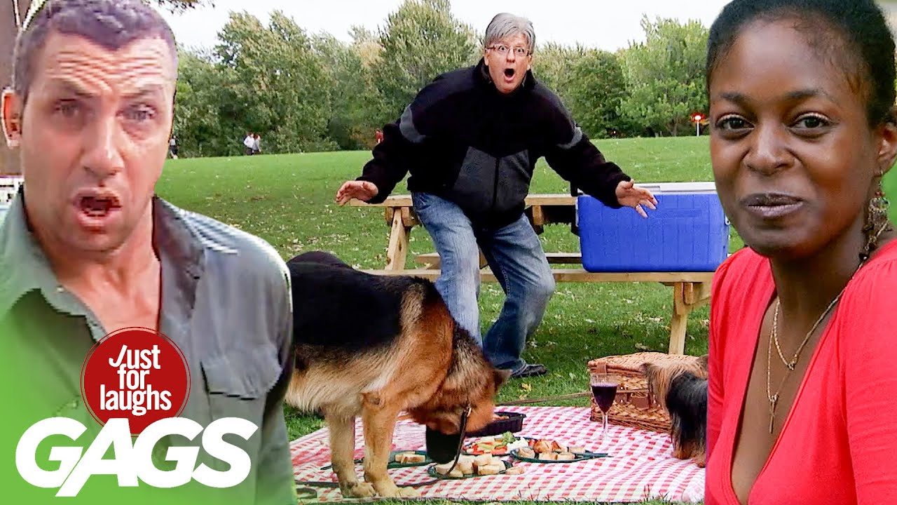 Best of Pranks at The Park Vol. 6