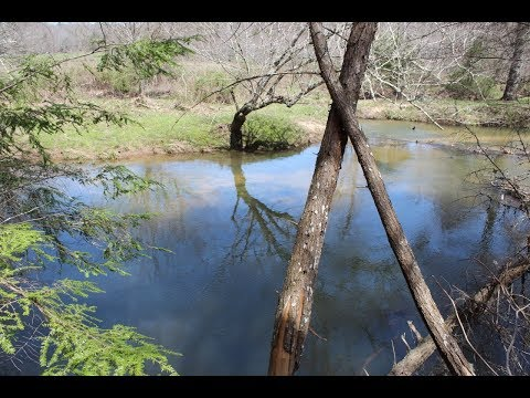 TN Creek Front Land | SB-TR11R