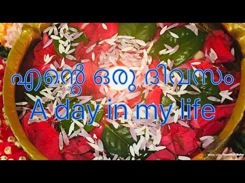 എന്റെ ഒരു ദിവസം II a day in my life II Beauty Bugs TV II