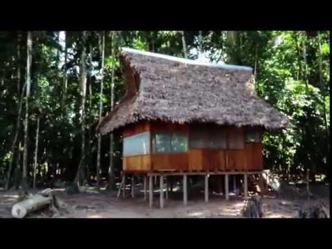 Alto Tambopata Lodge- Wasai Lodge and Expeditions