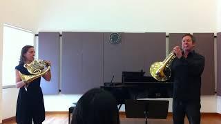 Stefan Dohr & Sarah Willis - Beethoven 7 Orchestral Excerpt
