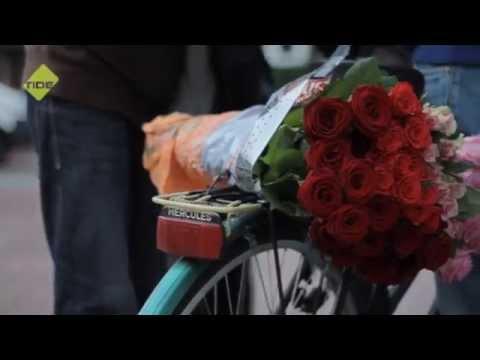 TIDE-TV - Der Rosenverkäufer - Hamburg immer anders!
