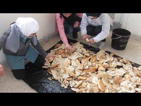 لا ترمي بقايا الخبز بعد اليوم شاهد كيف تحولها ابتداء من اليوم إلى أفكار لن تخطر في بالك !