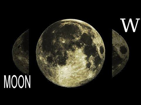 MOON - WikiVidi Documentary