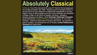 Symphony No. 8 in D Minor: Scherzo alla marcia - per stromenti a fiato
