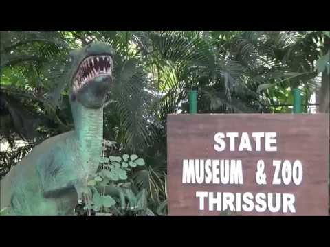Kerala State Museum & Zoo Thrissur - Thrissur Tourist place  Zoo & Museum