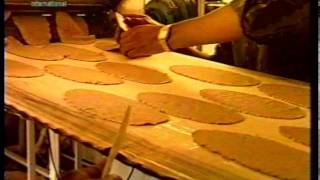 Roti Plant at Jalsa Salana UK 1998
