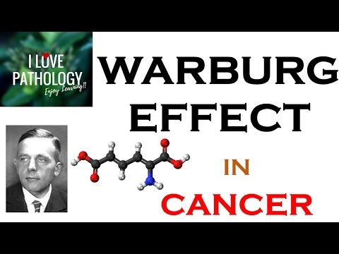 WARBURG EFFECT: Hallmark of  CANCER. What, Why & How?