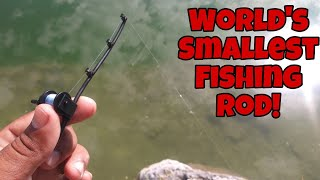 World's Smallest Fishing Rod Catches BIG FISH!