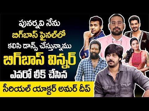 Bigg Boss 3 Winner: Siri Siri Muvvalu Serial Hero Amardeep About Bigg Boss 3 Telugu Contestants