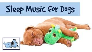 The Dog Song - Music to Help your Dog Sleep