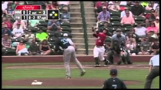 Bird Hit By Pitch in Fort Wayne
