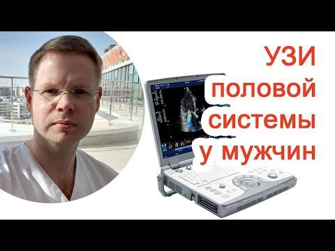 УЗИ половой системы у мужчин / Доктор Черепанов