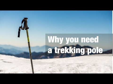 Why you need a trekking pole