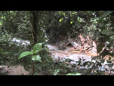 Agumatsa River Ghana
