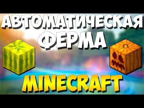 Вопрос: Как найти зерна тыквы в игре Minecraft?