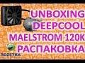 Deepcool Maelstrom 120K + Футболка DeepCool в подарок!