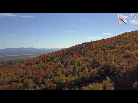 The New Hampshire Fall Foliage You've Been Looking For!